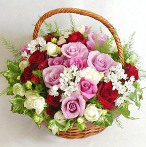 Заказ корзин цветов доставка доставка цветов в ростове на дону флориденс