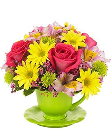 Доставка цветов в самаре недорого бесплатная доставка
