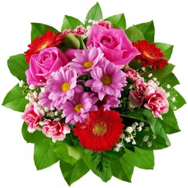 Цветы недорогие в самаре